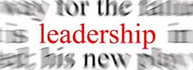 feature_leadership